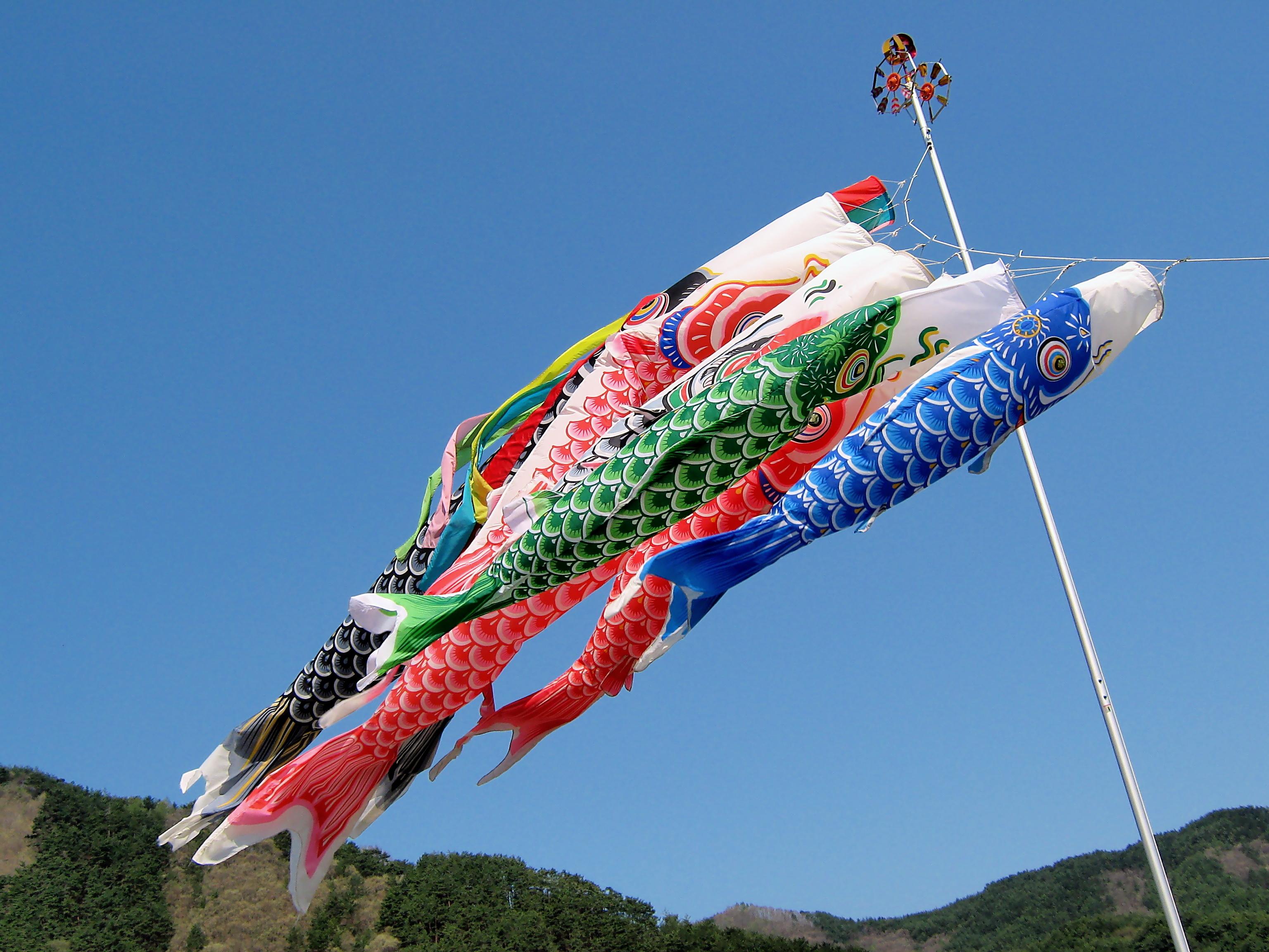 File koi nobori nagawa nagano japan 3585057745 jpg for Japanese koi windsock