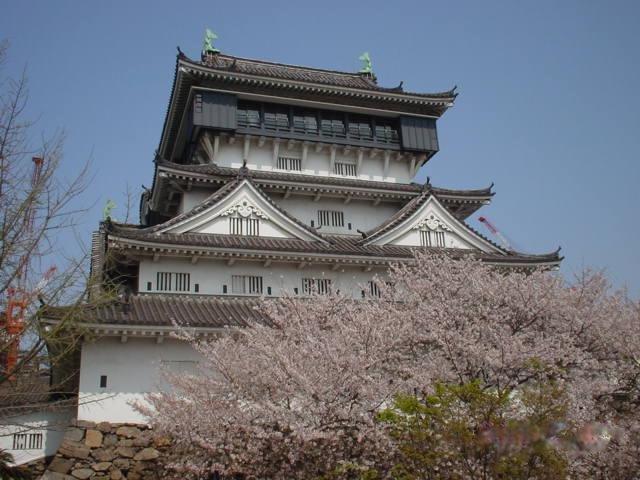 Kokura castle sakura