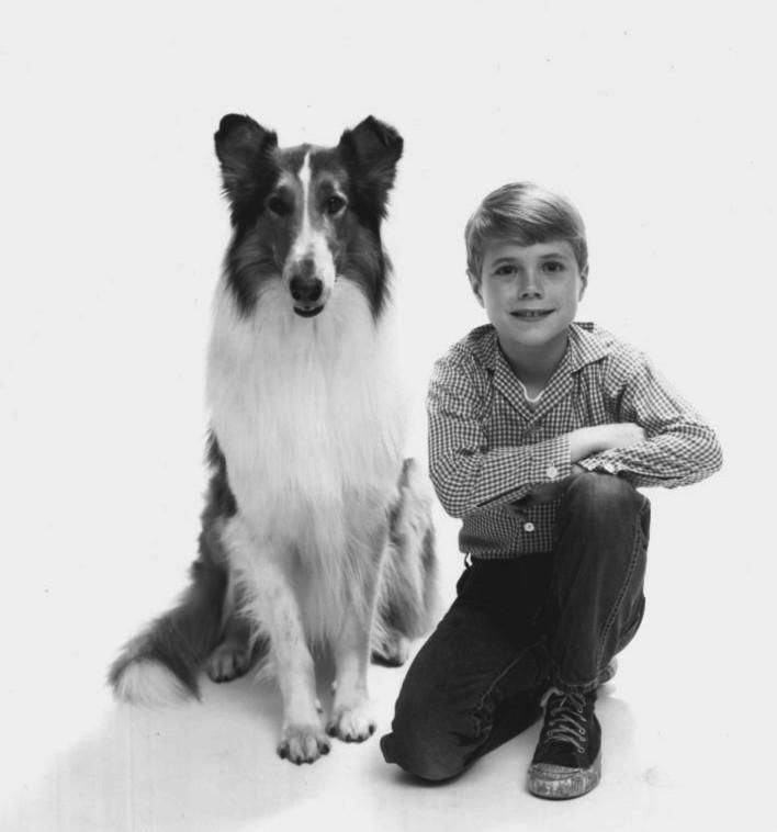 File:Lassie Jon Provost 1962.JPG - Wikimedia Commons