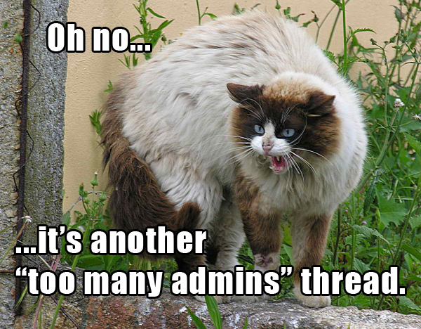 Lolcat_-_Too_Many_Admins.jpg