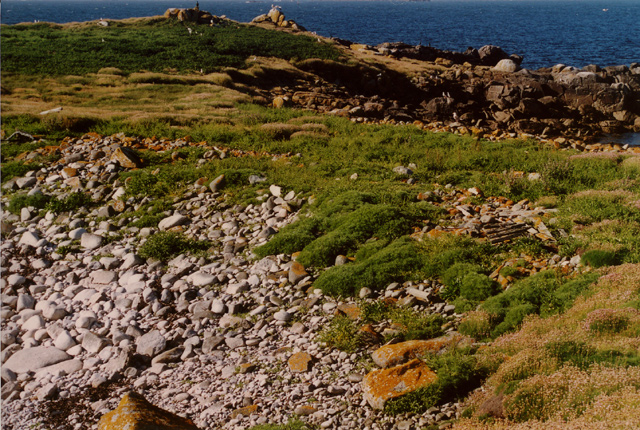 Annet Isles Of Scilly Wikipedia