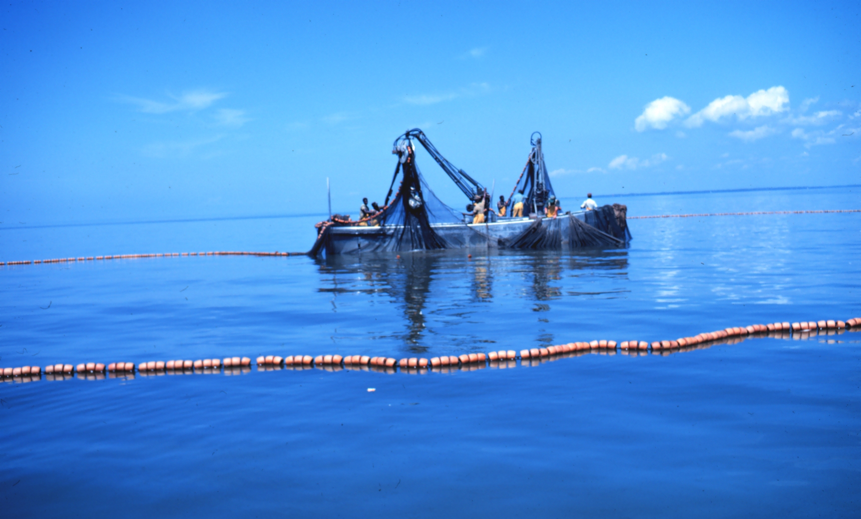 Catching those tuna the challenges of purse seine versus for Purse seine fishing