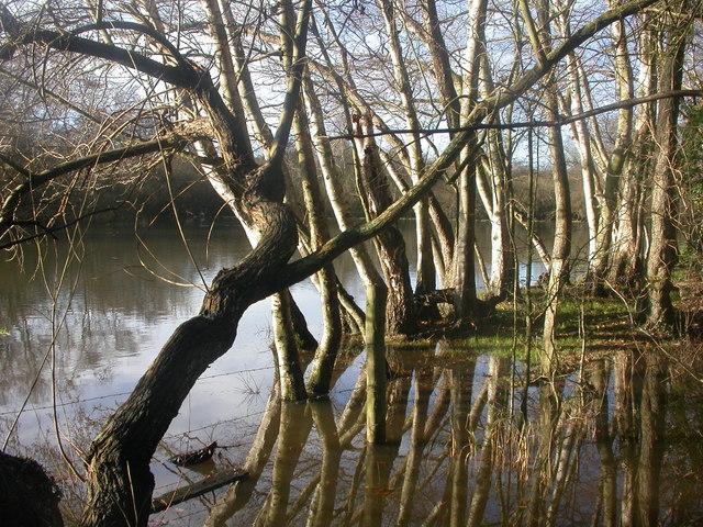 Moors River, Hurn - geograph.org.uk - 1069617