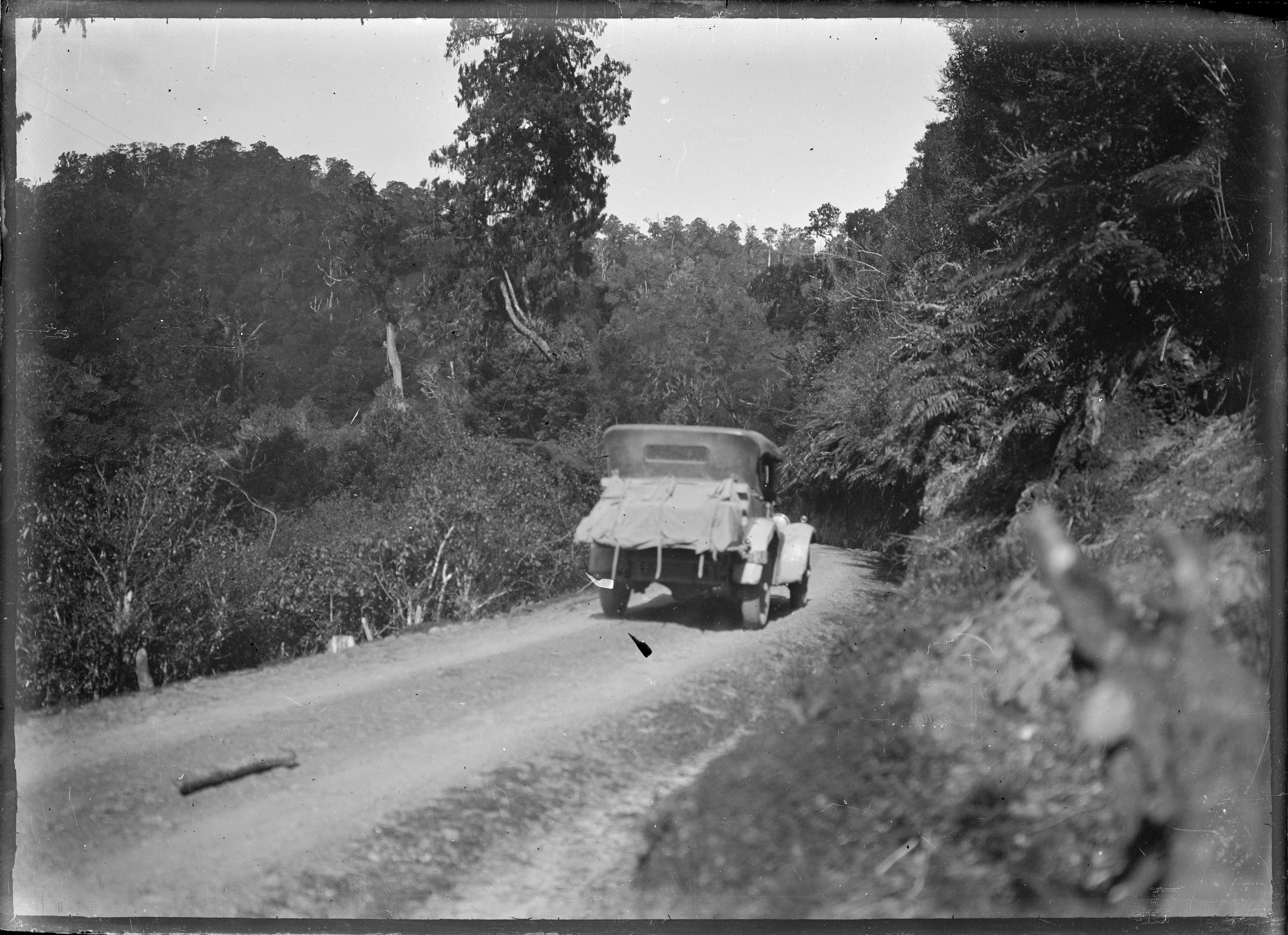 Rear view of a car on the Opotiki to Gisborne Road, in the Motu Bush. ATLIB 291736.png English: Rear view of a car in the bush near Motu on