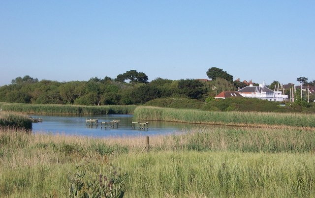 Reed Beds at Titchfield Haven - geograph.org.uk - 729106