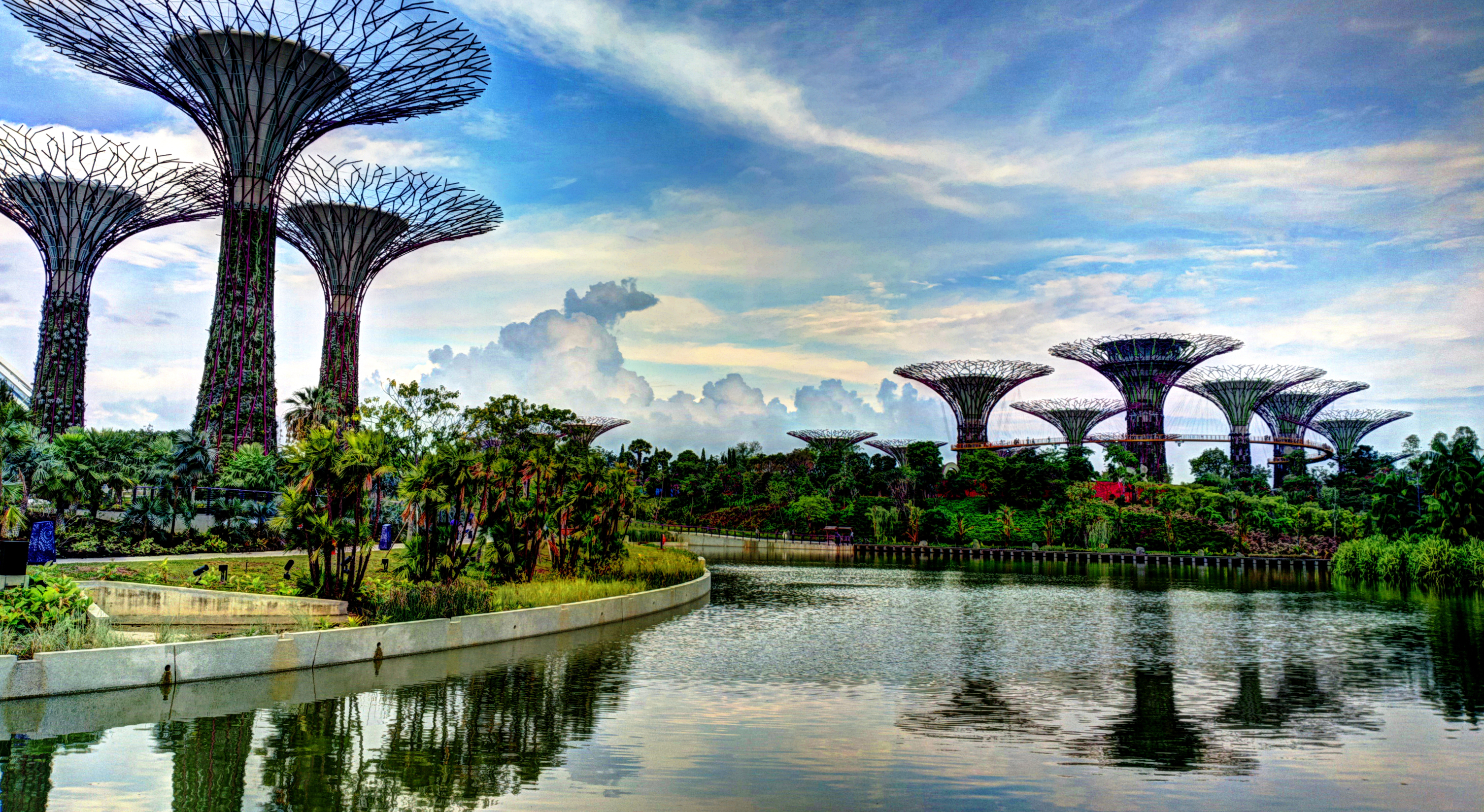 File Supertree Grove Gardens By The Bay Singapore Wikimedia Commons