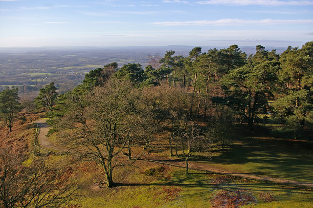 View from Leith Hill Tower - geograph.org.uk - 658341