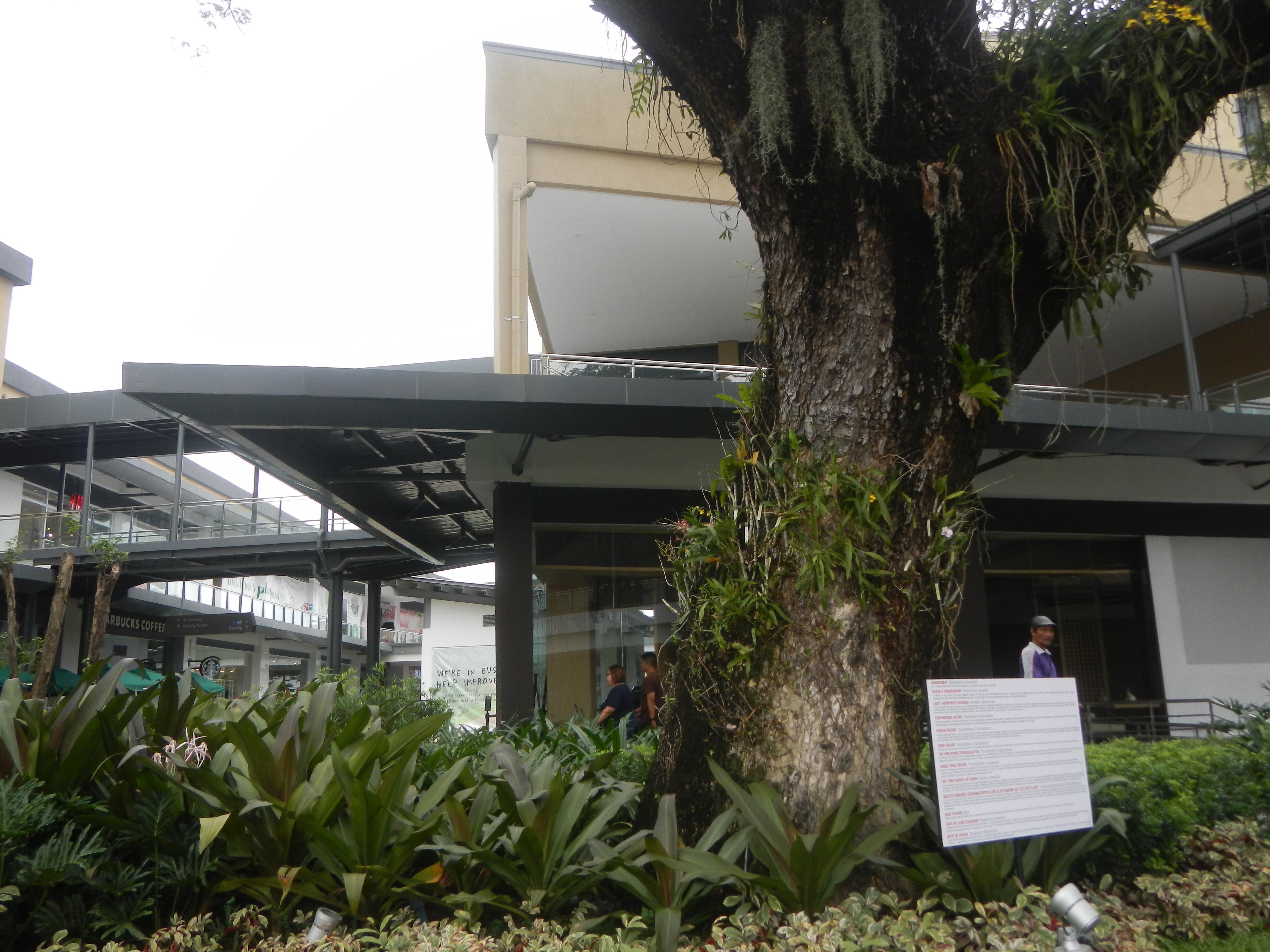 U.P. Campus