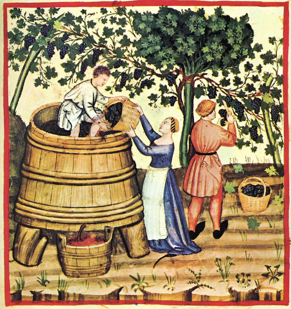 vintage drawing of a harvest event