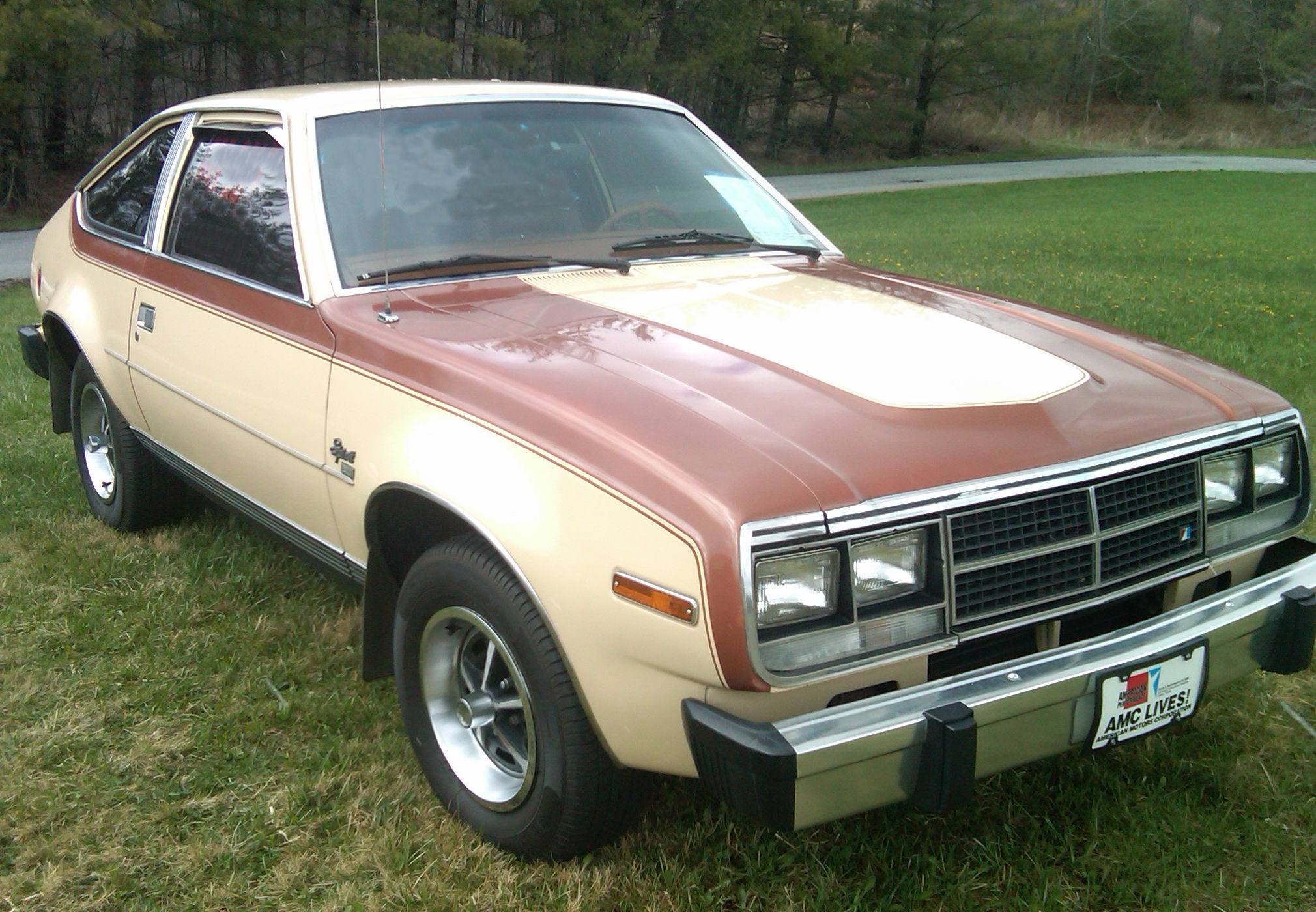 File:AMC Spirit DL two-tone liftback NC.jpg