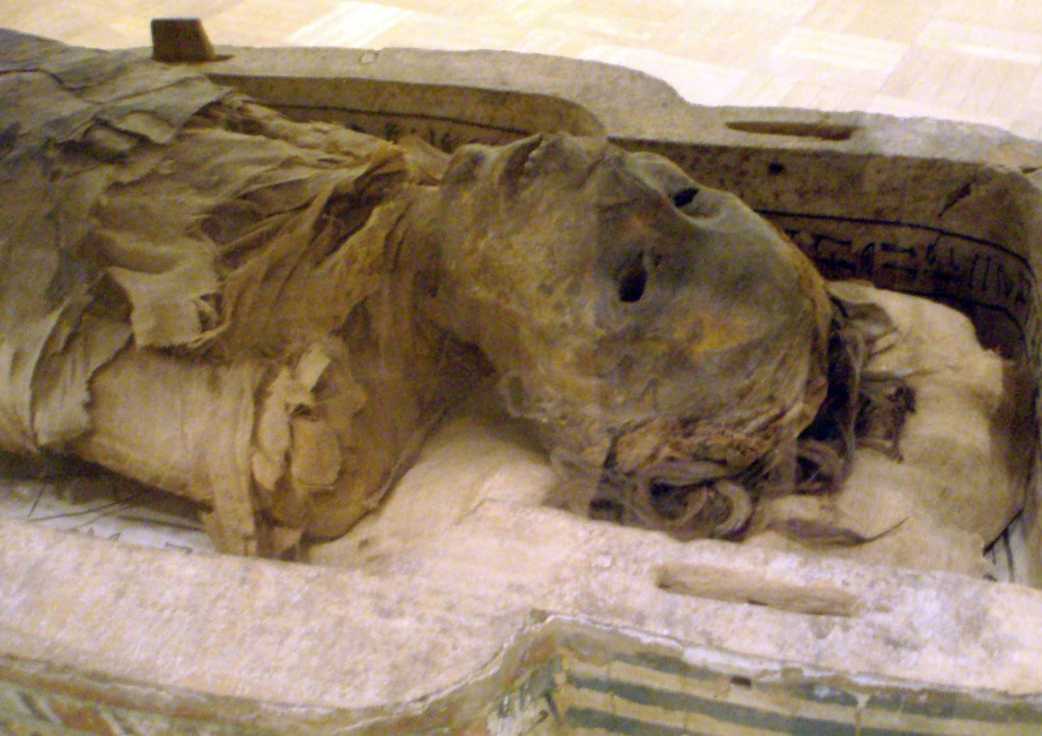 an overview of the ancient egyptian mummies Scientists have struggled to extract dna from egyptian mummies for decades a  new report shows ancient egyptians were closely related to.
