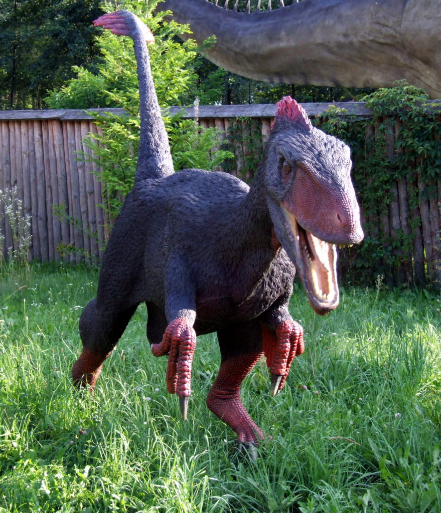 Image Result For Utah Raptor Coloring