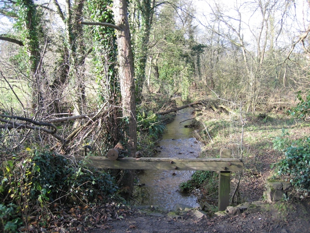 Broughton Brook and the mill sluice in Hawarden Park - geograph.org.uk - 628568