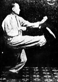 Chan Tzi Ching performing a technique