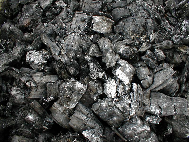 Resultado de imagem para carvão vegetal