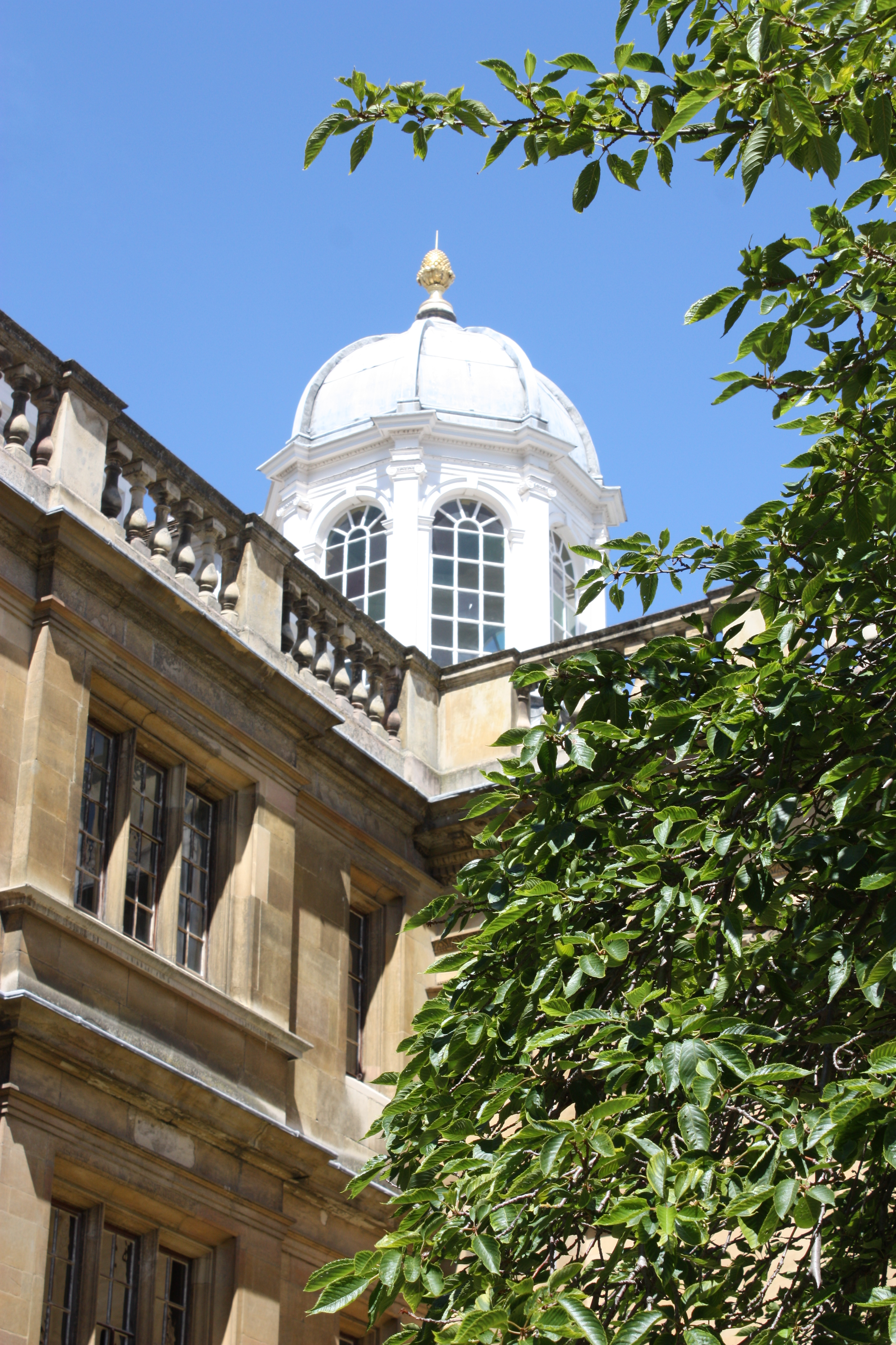 clare college cambrdige types of academic writing