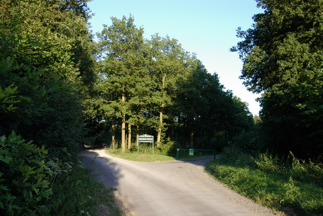 Entrance to Bernwood Forest - geograph.org.uk - 203775