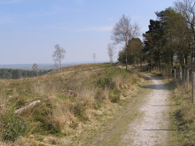 Footpath past the Rainbarrows, Duddle Heath - geograph.org.uk - 396370