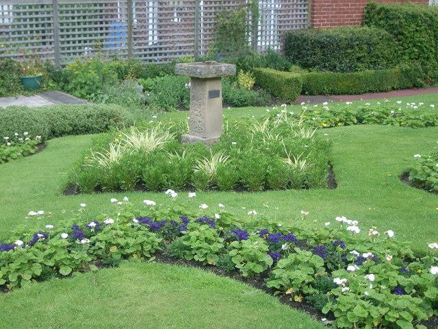 Gardens in Carlisle Park - geograph.org.uk - 943736