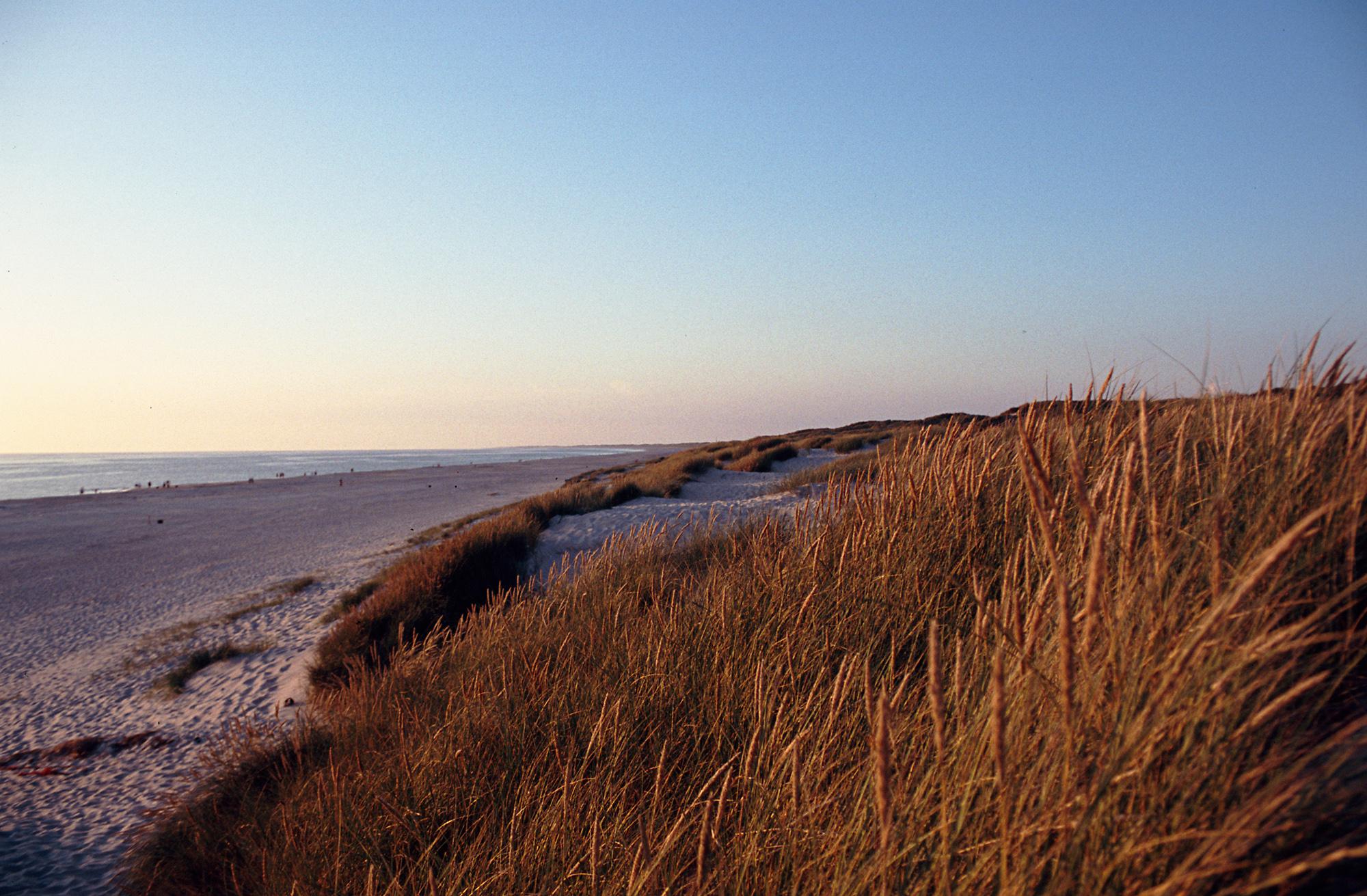 Strand nordsee sonnenuntergang  File:Henne Strand bei Sonnenuntergang.jpg - Wikimedia Commons