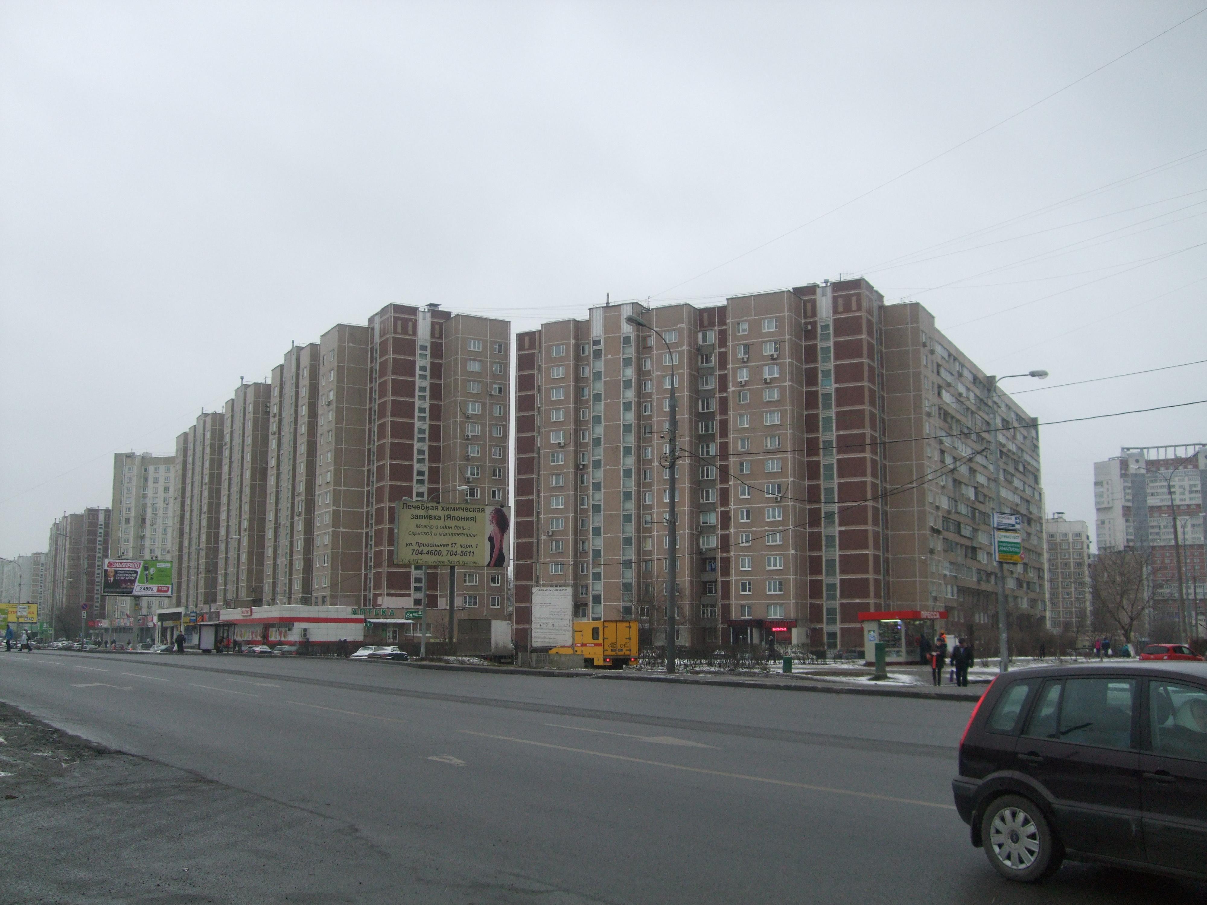 Lermontovs. Pronskaia 2014.jpg