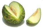 Melon santa.jpg