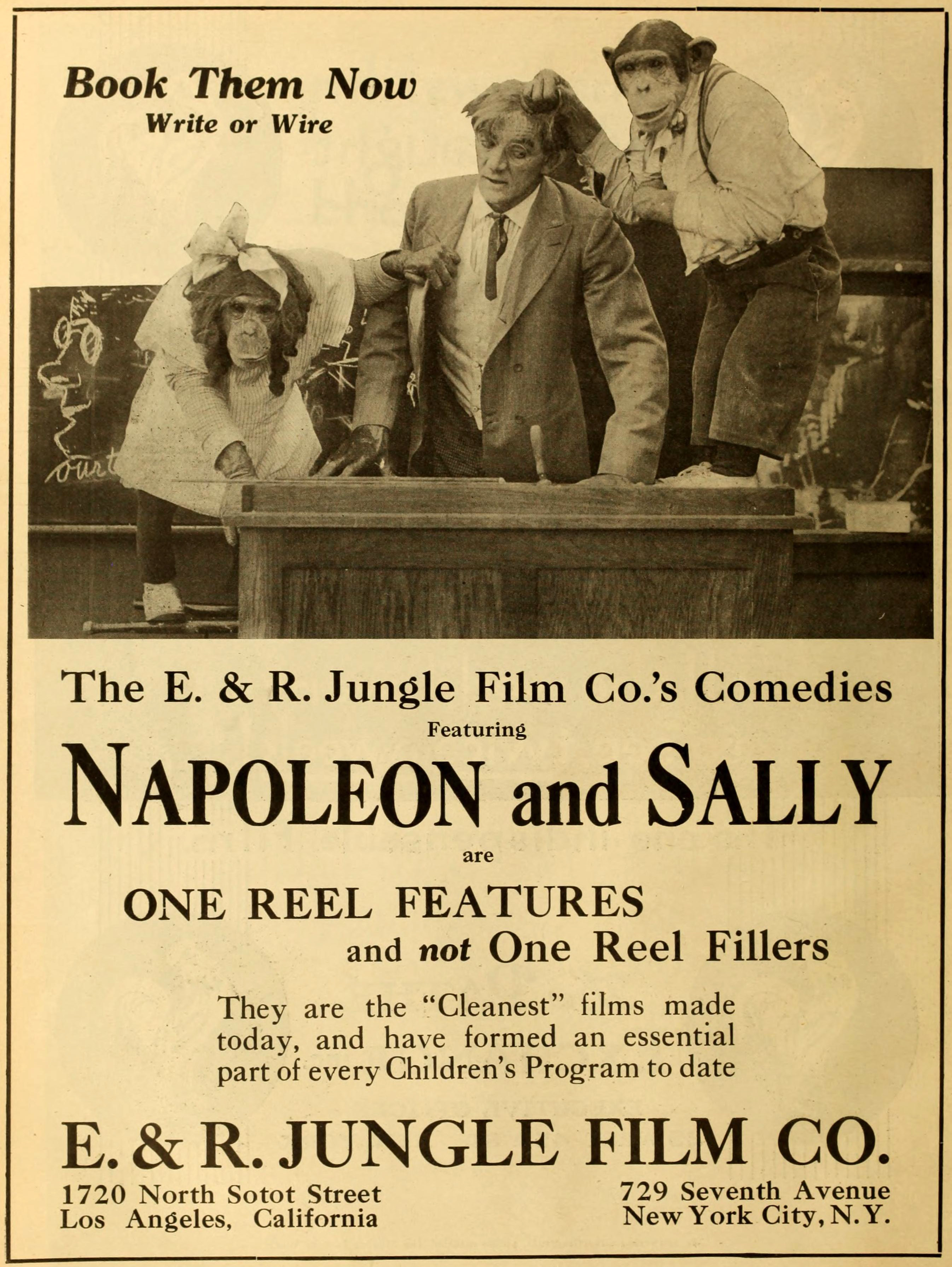 Image result for Napoleon and Sally 1916