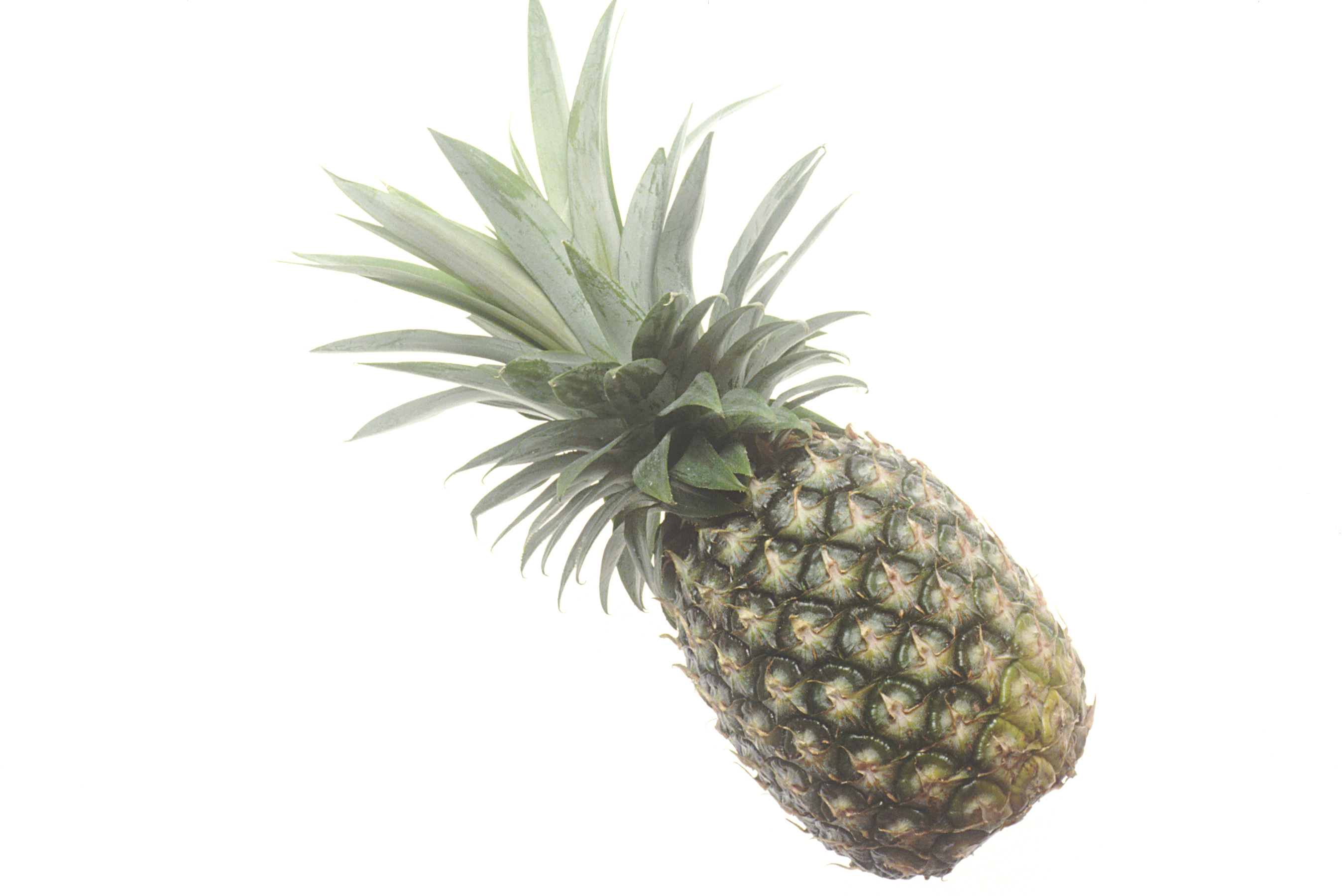 Http Commons Wikimedia Org Wiki File Pineapple Jpg