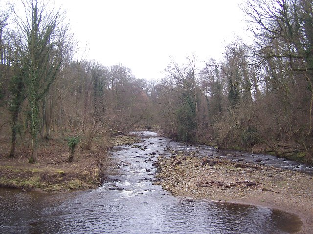 River Cover - geograph.org.uk - 127148