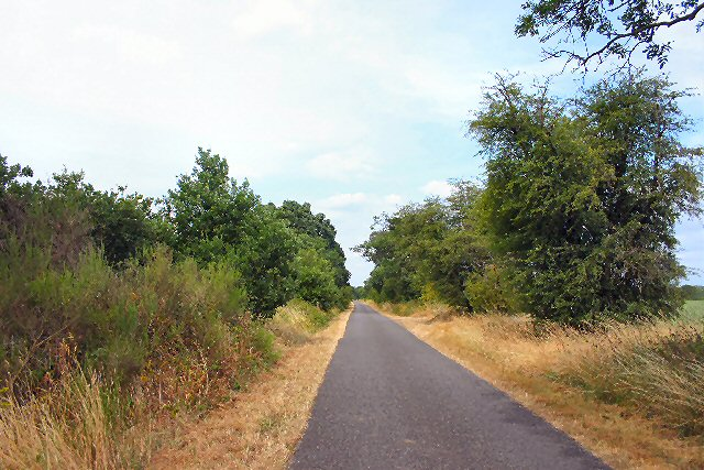 File:Road from Cavenham to Icklingham - geograph.org.uk - 206863.jpg