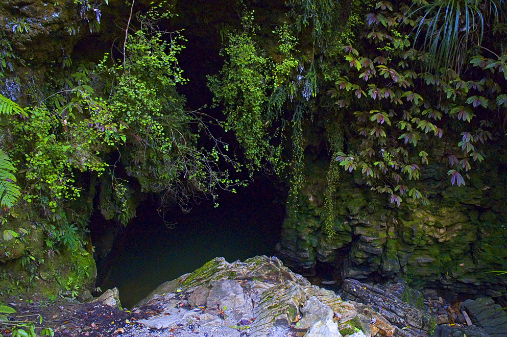 Waitomo New Zealand  city photos : Original file ‎ 993 × 660 pixels, file size: 467 KB, MIME type ...