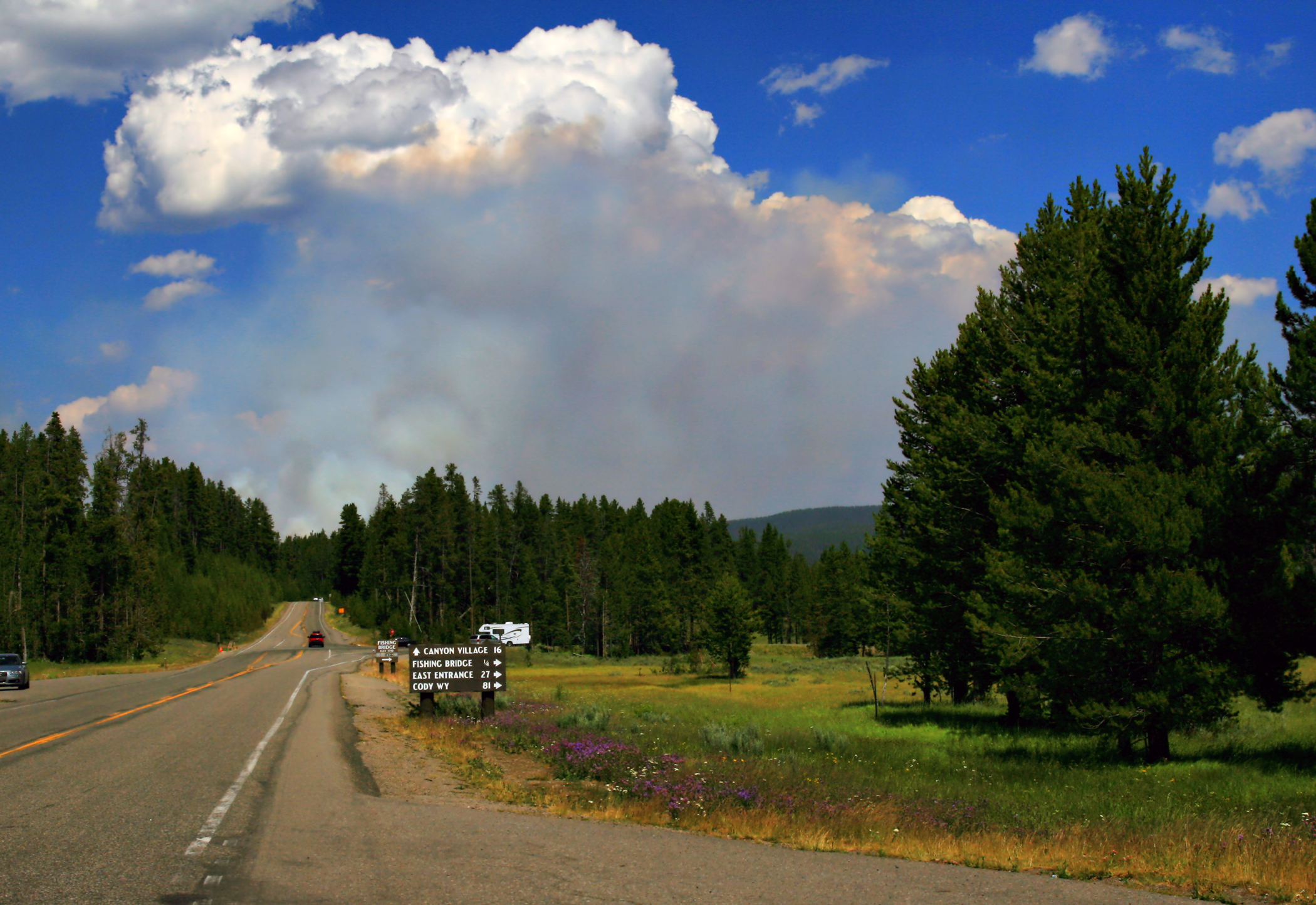 A paved road with trees and grasses on the side with a large, white and dark gray smoke cloud rising in the distance.