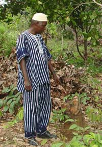 A cashew plantation owner in the Boké prefecture.