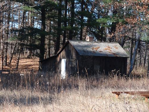 Sand county aldo leopold shack