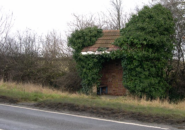 File:An Overgrown Bus Shelter - geograph.org.uk - 97283.jpg