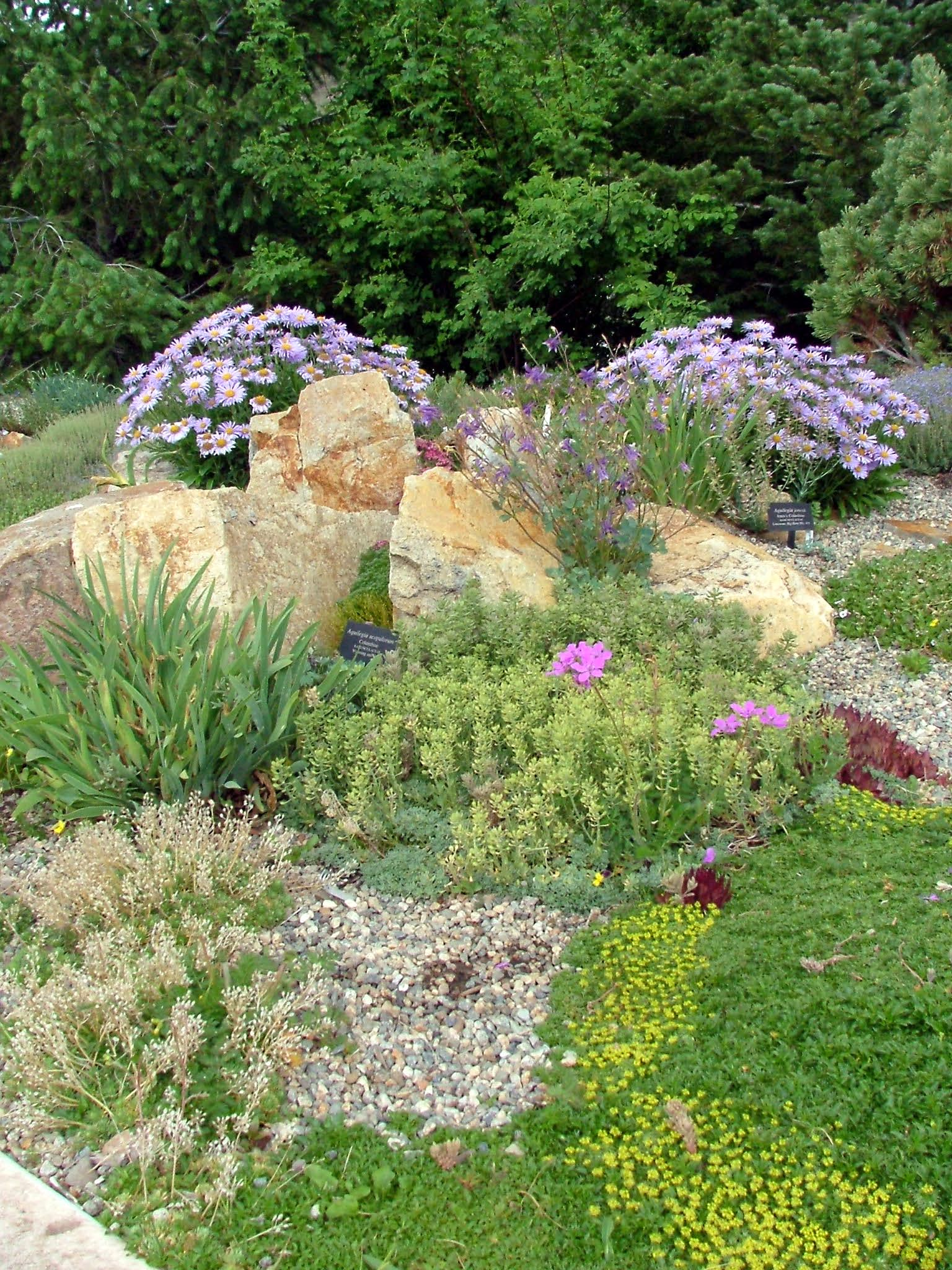 Alpine garden ideas architecture decorating ideas for Garden landscaping ideas