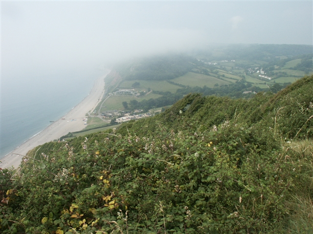 Branscombe Mouth from on high - geograph.org.uk - 231477