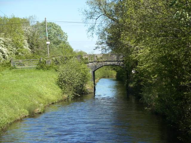 Bridge on the Lough Allen Canal - geograph.org.uk - 381479