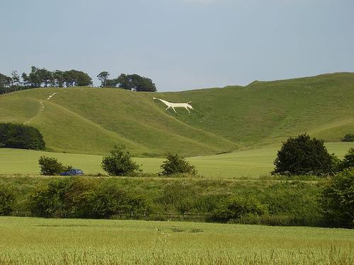The en:Cherhill White Horse, Cherhill, Wiltshire, England