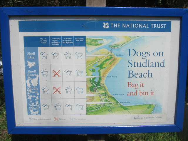 Dogs at Studland - geograph.org.uk - 1295140