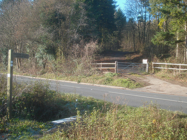 Entrance to Tiddesley Wood - geograph.org.uk - 1158334