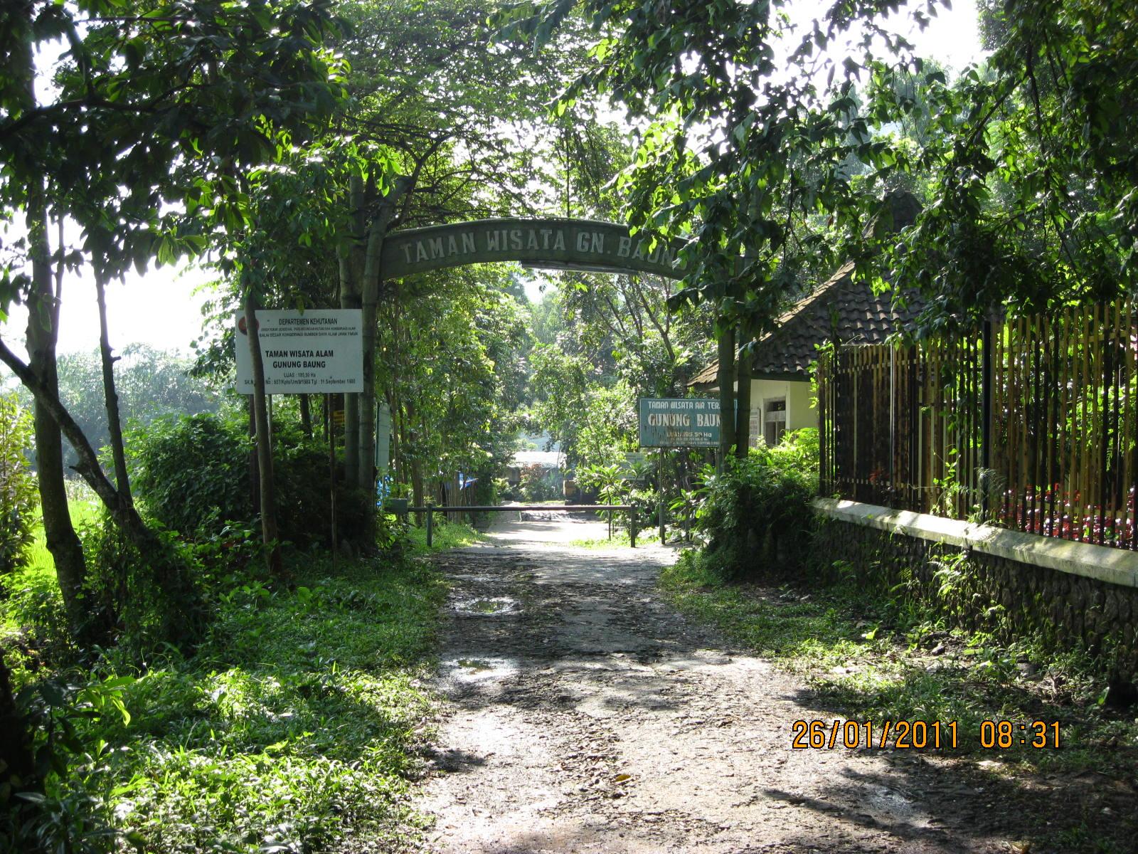 Filegate Of Taman Wisata Air Terjun Gunung Baung Purwodadi Pasuruan Panoramio
