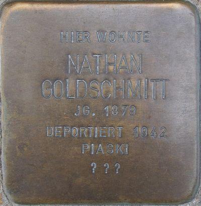 Goldschmitt Nathan.jpg
