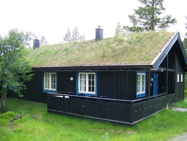 Lovely File:Green Roof In Norway.png