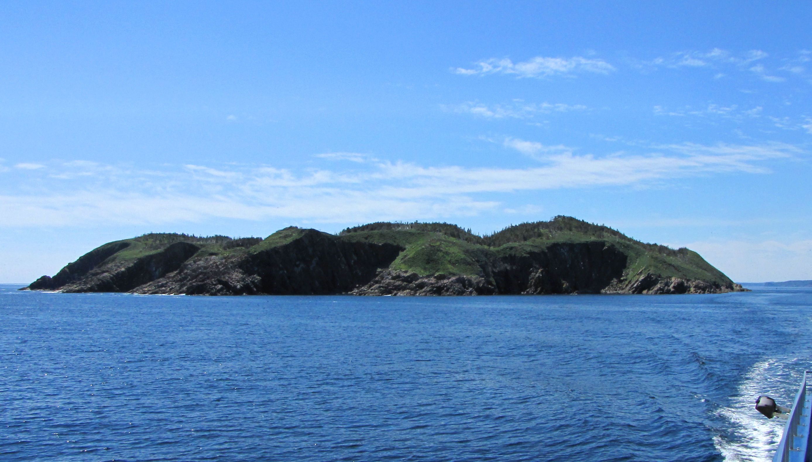 Witless Bay Island