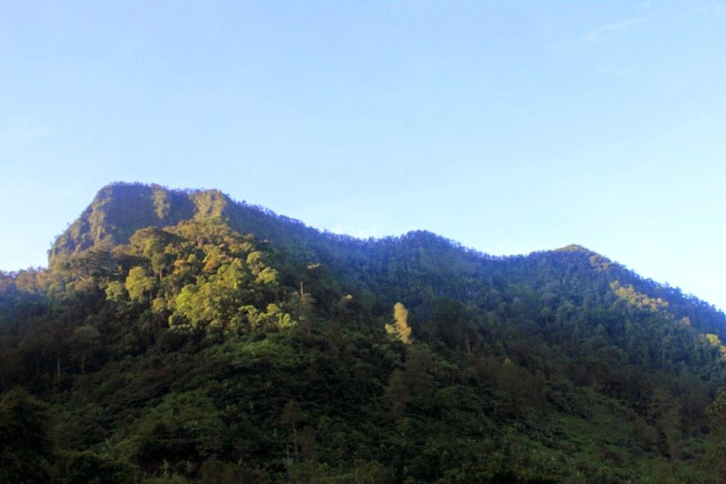 Suaka Margasatwa Gunung Sawal Wikipedia Bahasa Indonesia