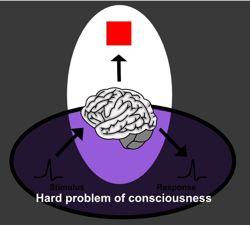 Thought Experiments In Philosophy Of Mind