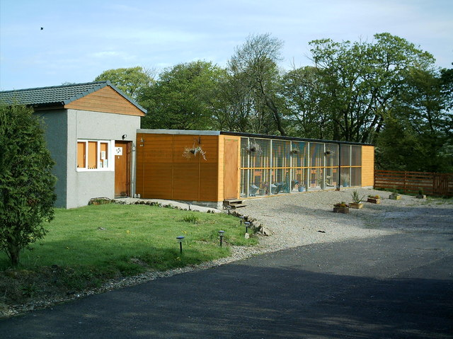 File:Holmbyre Cattery - geograph.org.uk - 167661.jpg