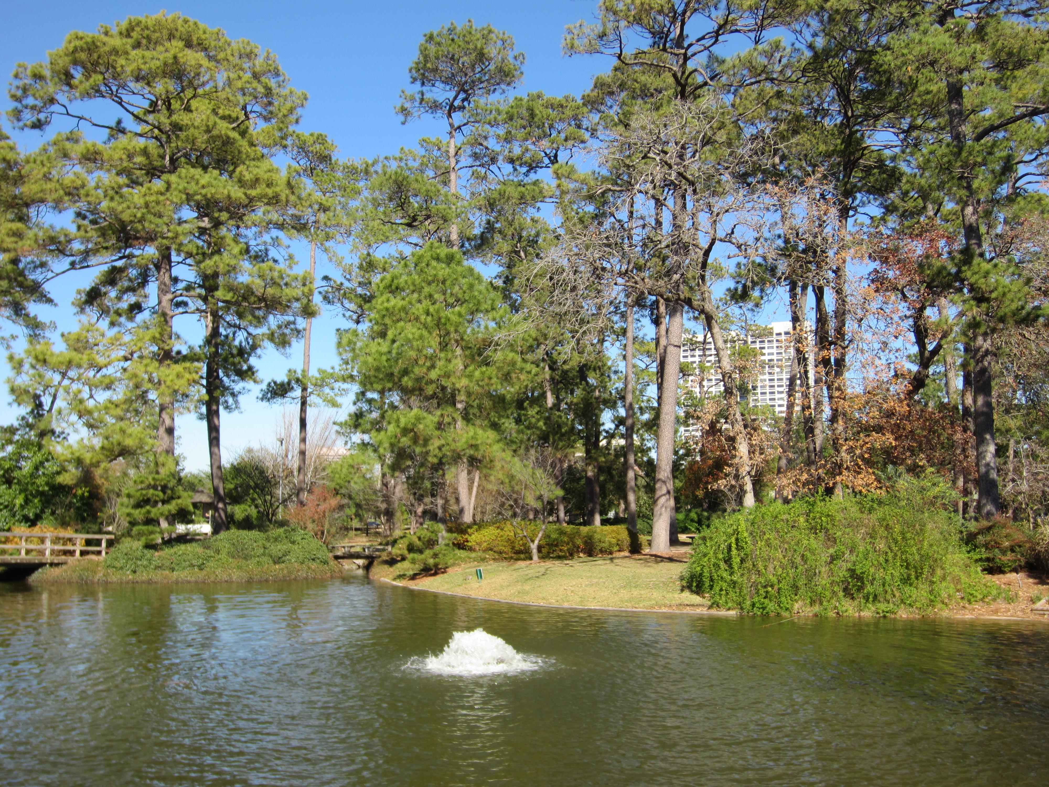 File Japanese Garden Hermann Park Houston In Jan 2012 Jpg