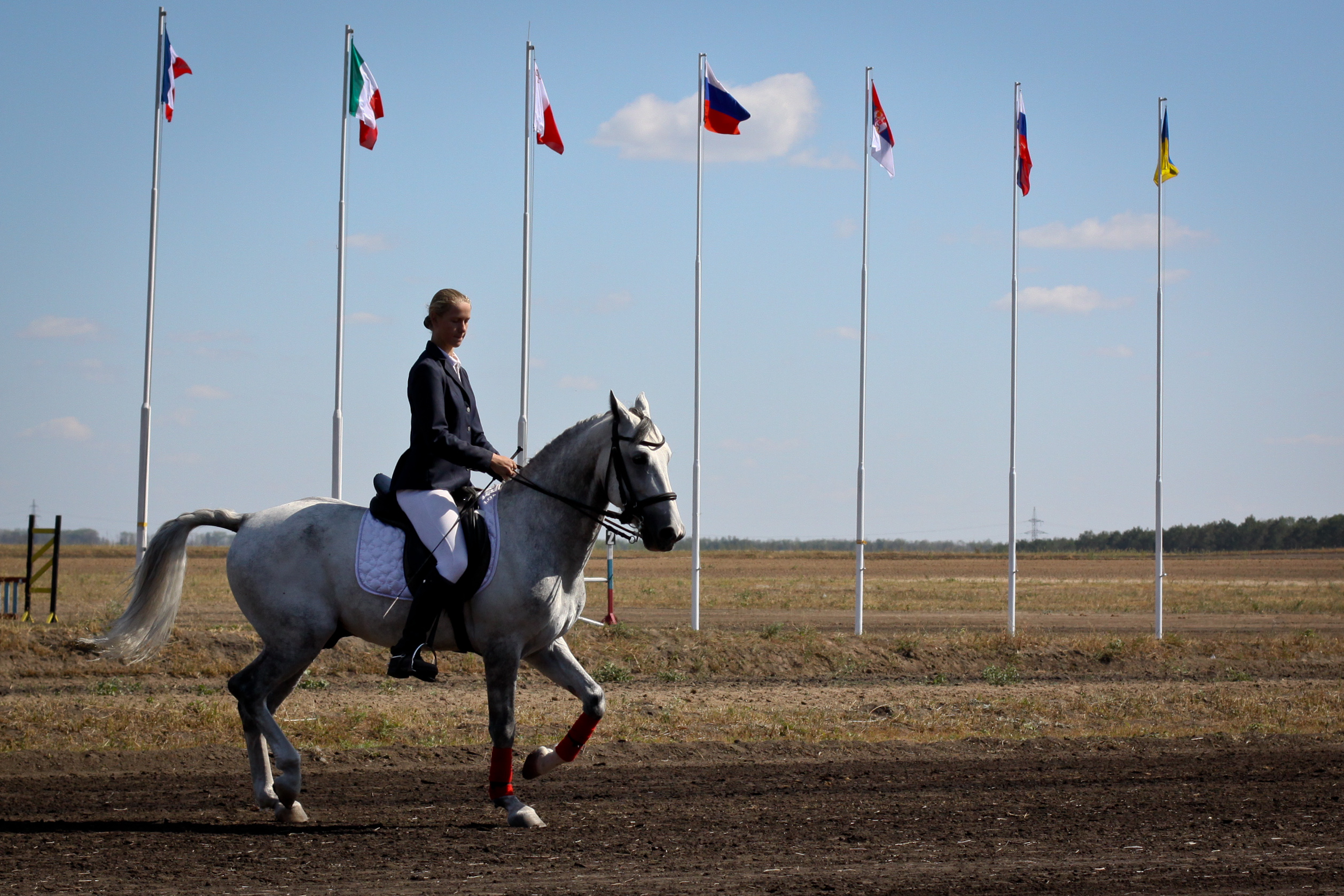 List Of Russian Horse Breeds Wikiwand